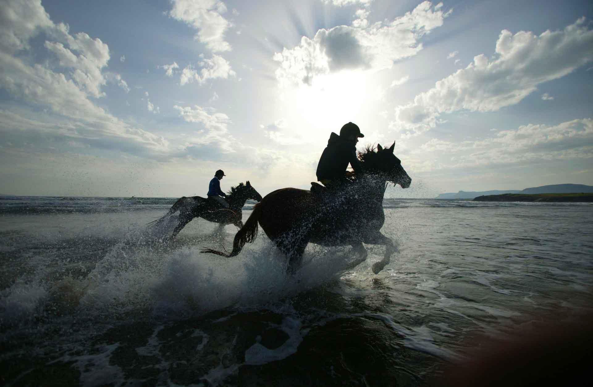 Photo of ورزش و ماجراجویی در سوچی یکی از هیجان انگیزترین مقاصد گردشگری جهان