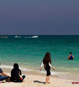 جزیره مرجانی کیش