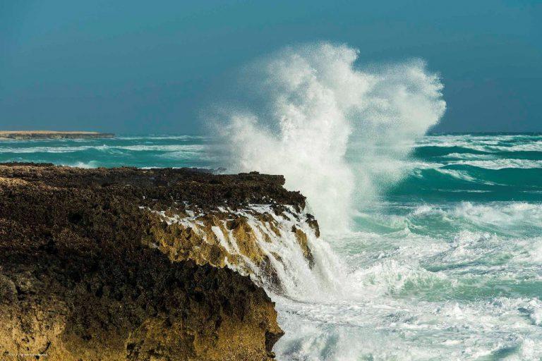 Photo of تور کیش | تور جزیره کیش زمستان ۹۸