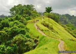 منطقه ابود بالی
