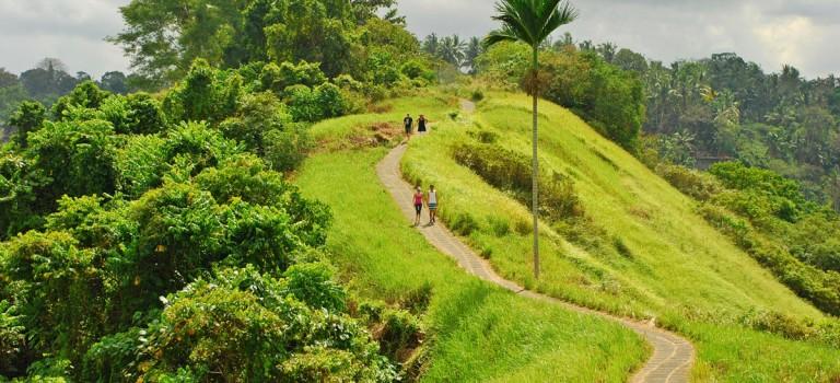 منطقه ابود بالی | UBUD Bali