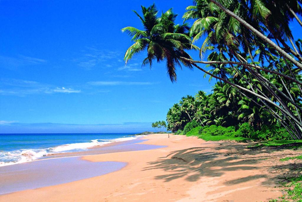 جاذبه های گردشگری سریلانکا