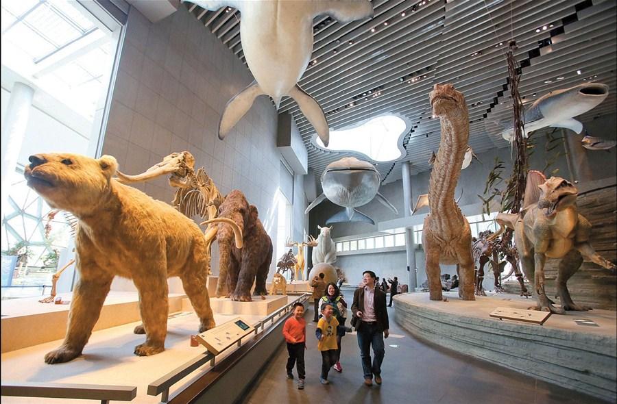 موزه تاریخ طبیعی شهر شانگهای
