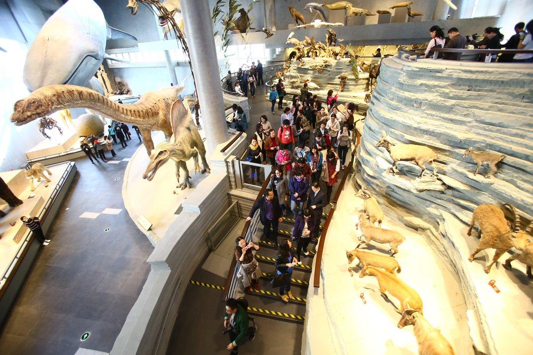 موزه منابع طبیعی شهر شانگهای