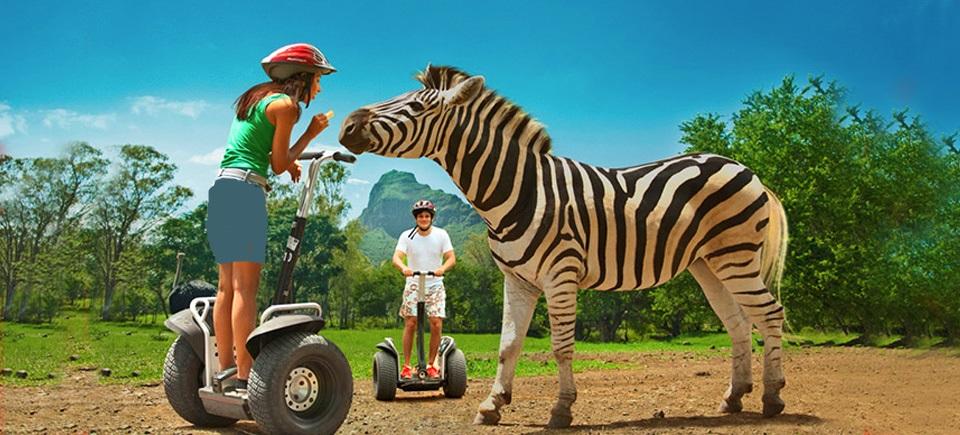 پارک حیات وحشی کازلا موریس