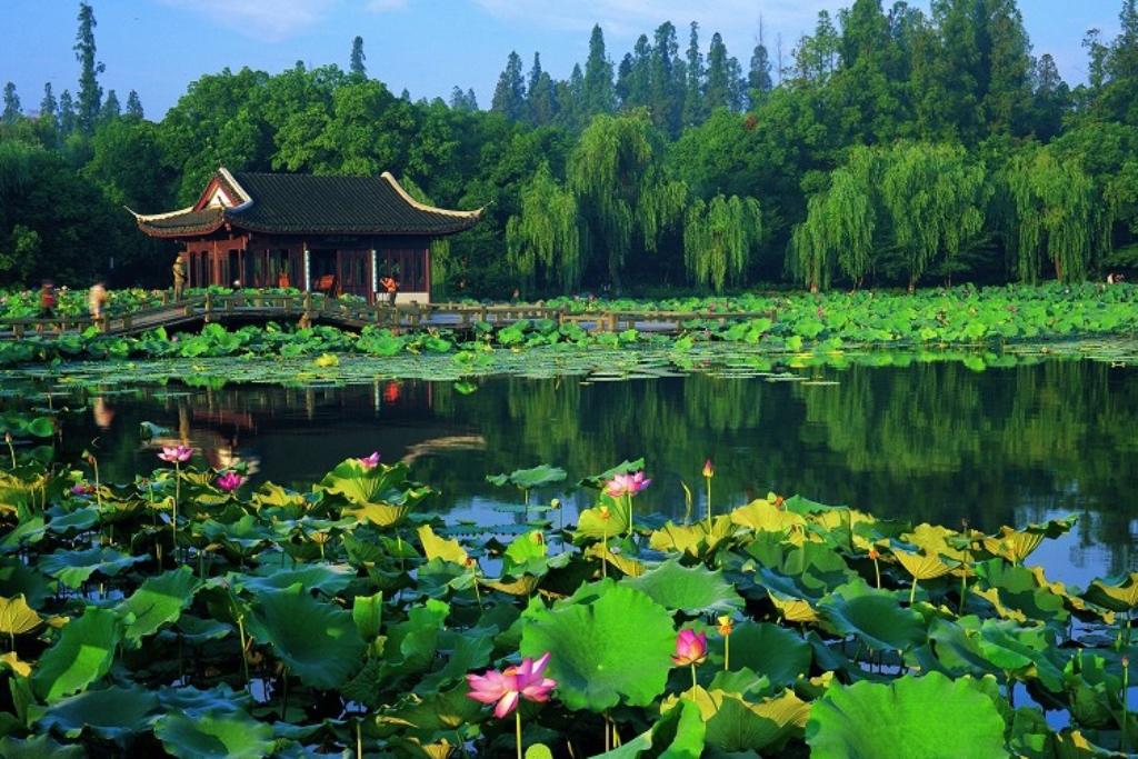 Photo of دریاچه غربی هانگزو چین | West Lake in Hangzhou