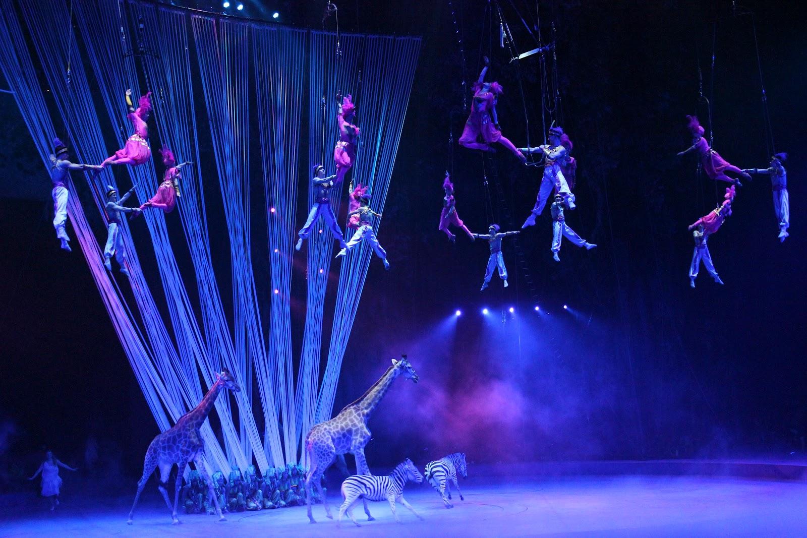 سیرک بین المللی گوانجو چین