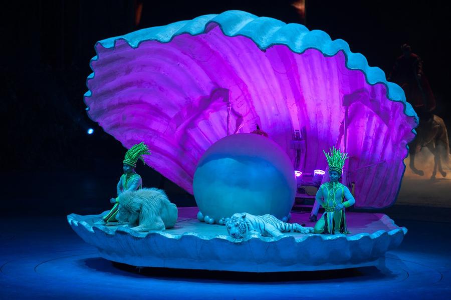 سیرک گوانگژو چین