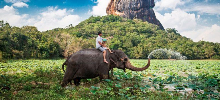 قلعه سیگیریا سریلانکا | صخره شیر سریلانکا