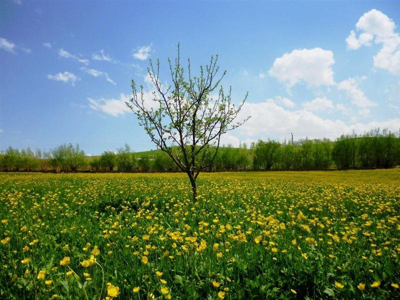 طبیعت ارومیه