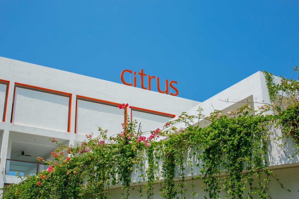 نمای خارجی هتل سیتروس