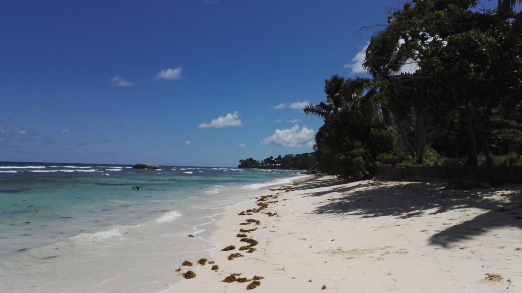 ساحل زیبای هتل کرال استرند در سیشل