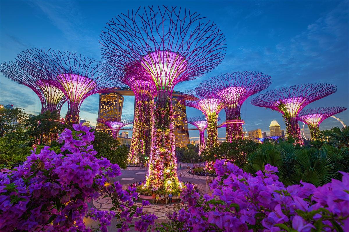 تور ترکیبی سنگاپور و بالی و کشتی کروز 12 روزه