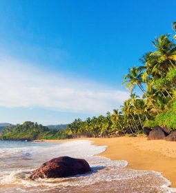 تور سواحل گوا هند