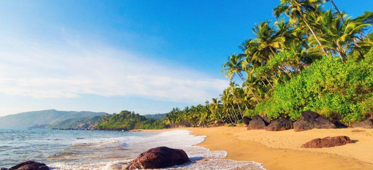 تور سواحل گوا هند | تور ۷ شب سواحل زیبای گوا هند | GOA TOUR