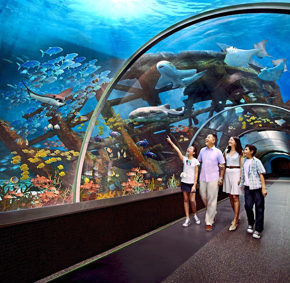 تور سنگاپور و ماکائو