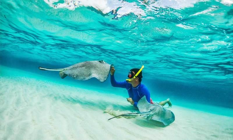 اسنورکلینگ در مالدیو