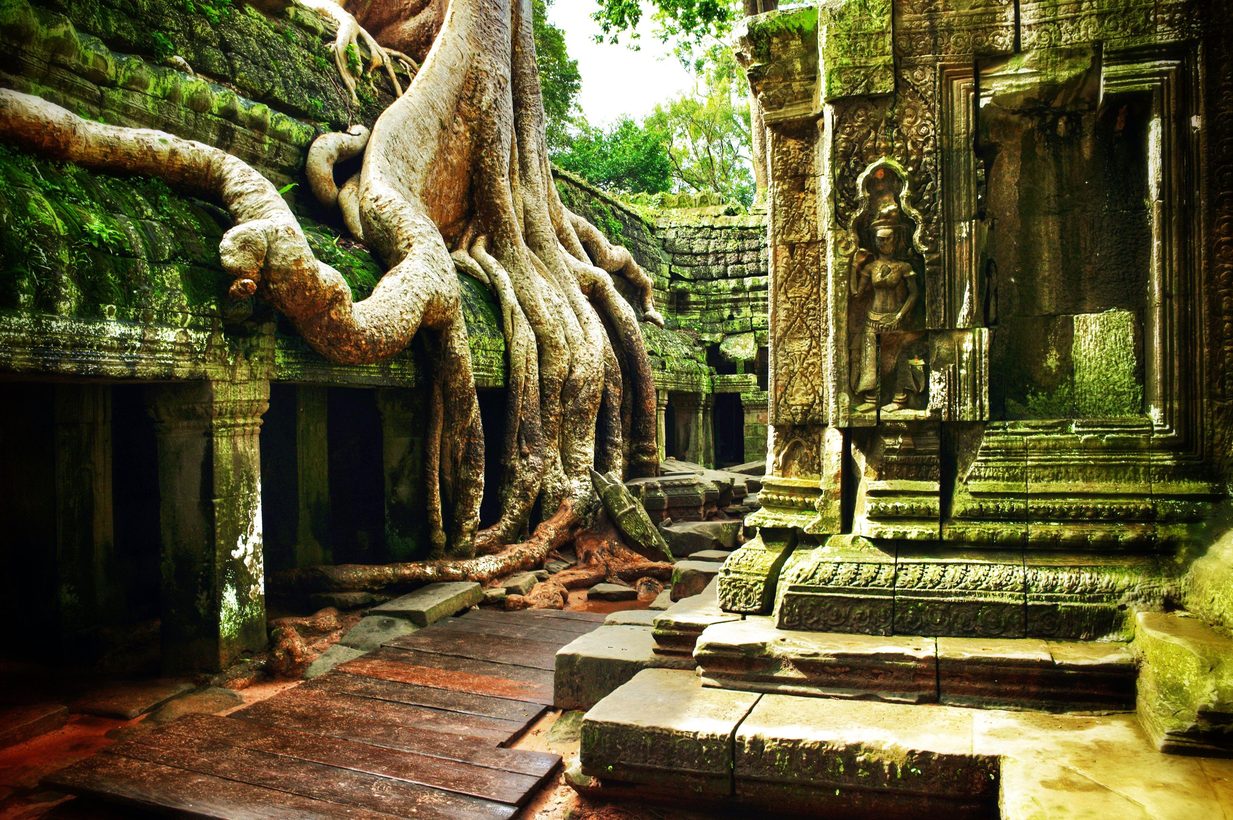 معبد انگکوروات سیم ریپ کامبوج