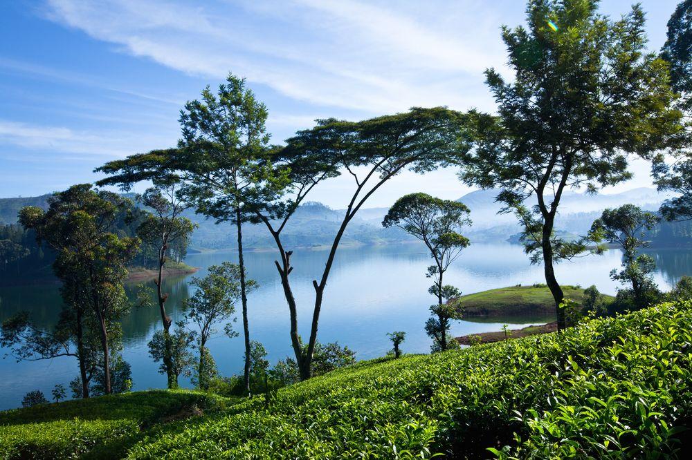 تور لاکچری سریلانکا