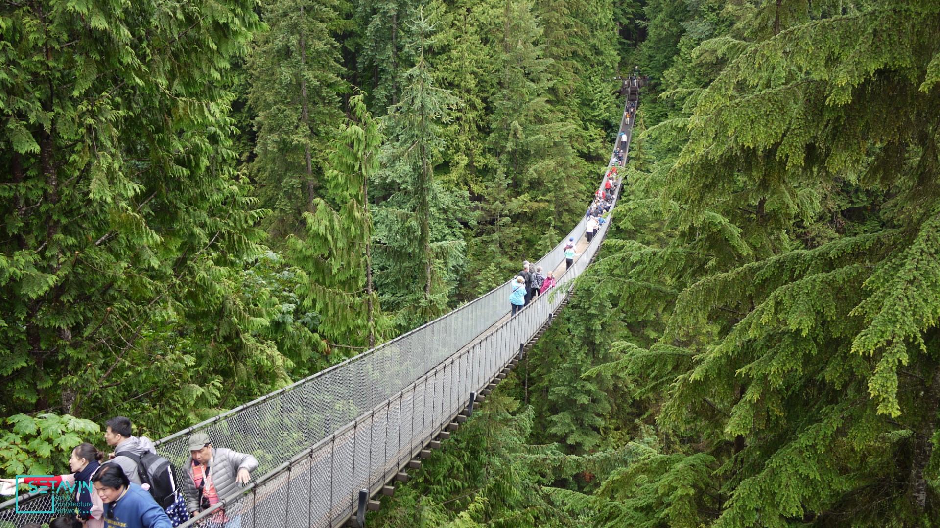 پل معلق ونکوور کانادا یکی از دیدنی های جذاب اطراف ونکوور